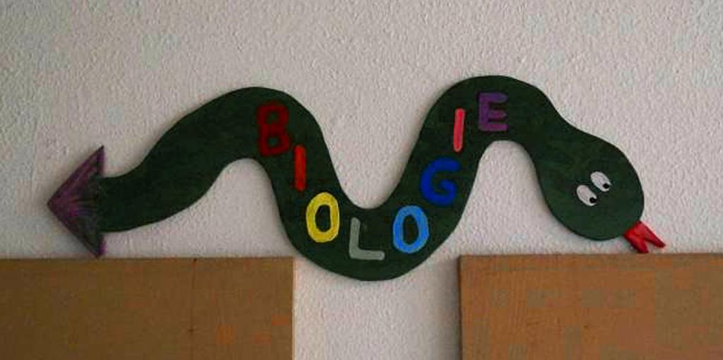 Bio-Schlange